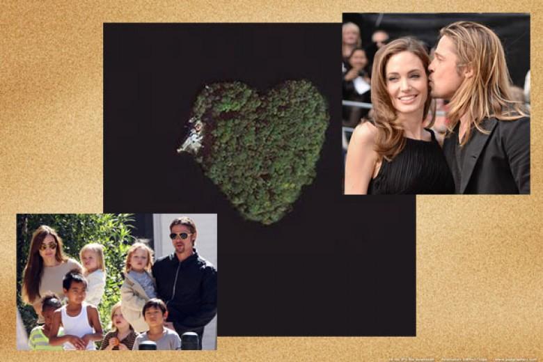 Kado Istimewa Jolie Untuk Brad Pitt