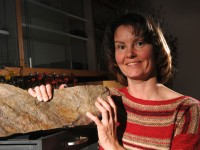 Fosil Tertua Baru Ditemukan