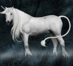 Salah Kaprah Asal Unicorn