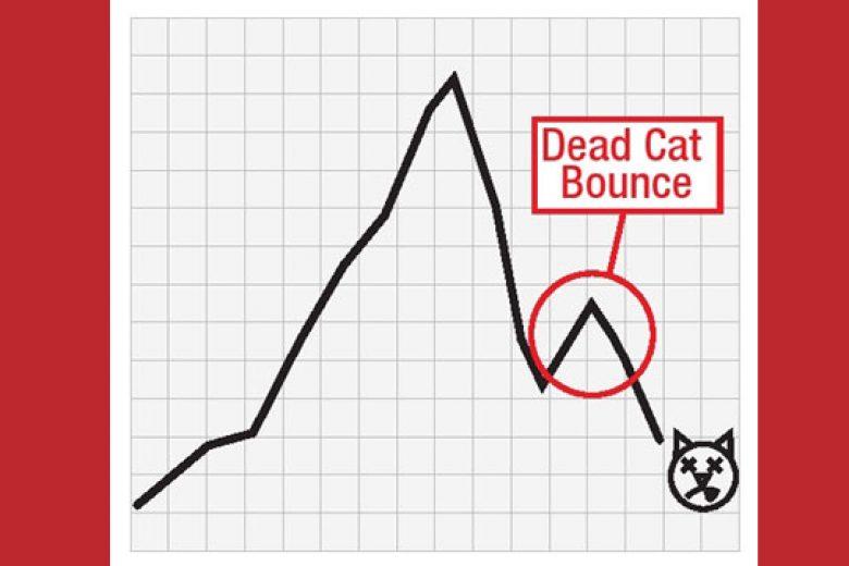 Pekan Depan, Waspadai 'Dead Cat Bounce' di IHSG