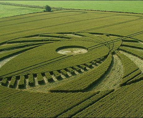 Crop Circle Bikinan Manusia atau Alien?