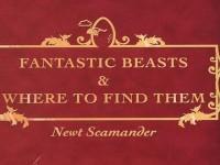 Makhluk Sihir Harry Potter Akan Difilmkan