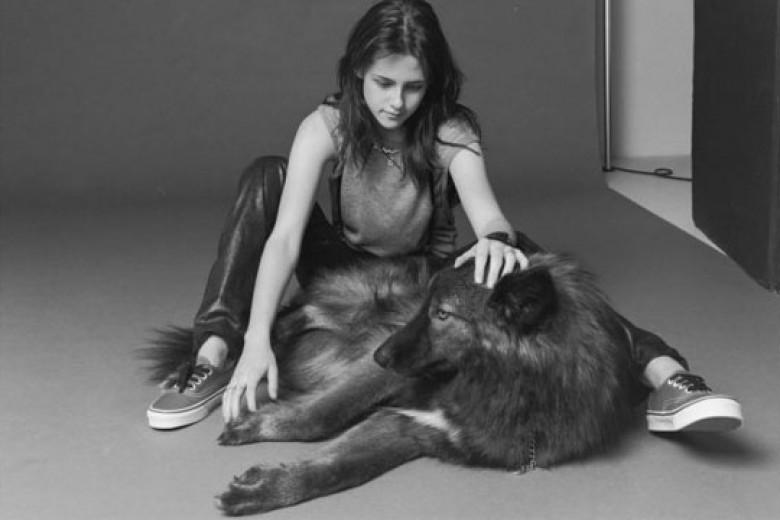 Kristen Stewart Dapat Hadiah Seekor Serigala