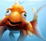 Duh, Ikan Mas Kok Jadi Pucat?