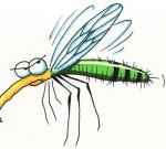 Nyamuk Memang Menyebalkan