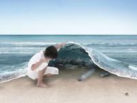 Kemana Semua Sampah Plastik di Lautan?