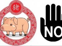 Babi dari AS Dilarang Masuk Tiongkok