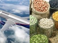 Produk Pertanian RI dan Pesawat Rusia