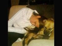 Selamatkan Anjing, Rendina Malah Ditabrak