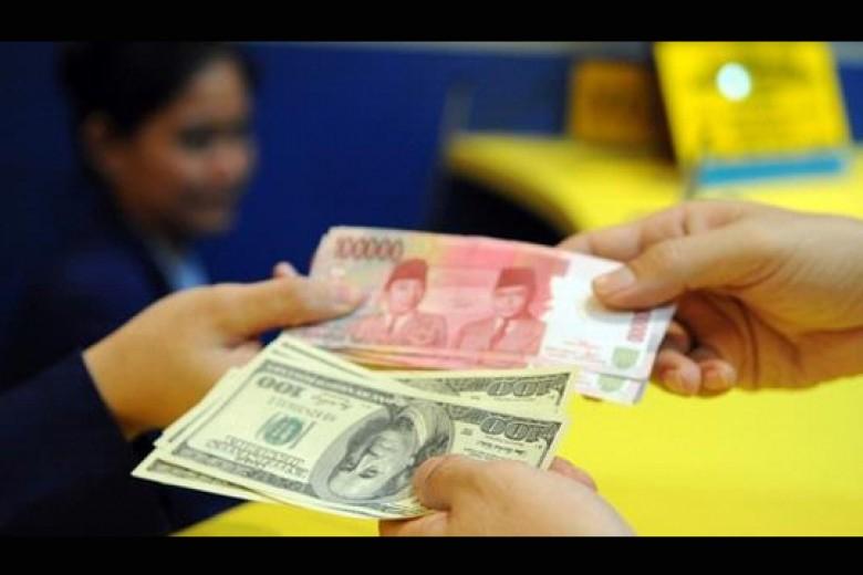 BI Cabut Izin 36 Money Changer
