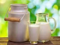 Susu dan Daging Organik Lebih Sehat