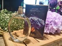 Harum Molto Dalam Sebotol Parfum
