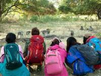 Petualangan 5 Remaja Melindungi Lingkungan