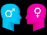 Beda Kerja Otak Perempuan & Lelaki
