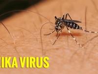 Zika Sebabkan Travel Warning ke Singapura