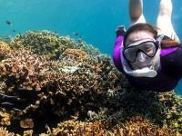 Lokasi Selam Menawan di Indonesia