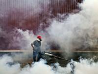 WHO: Asia-Pasifik Waspada Zika