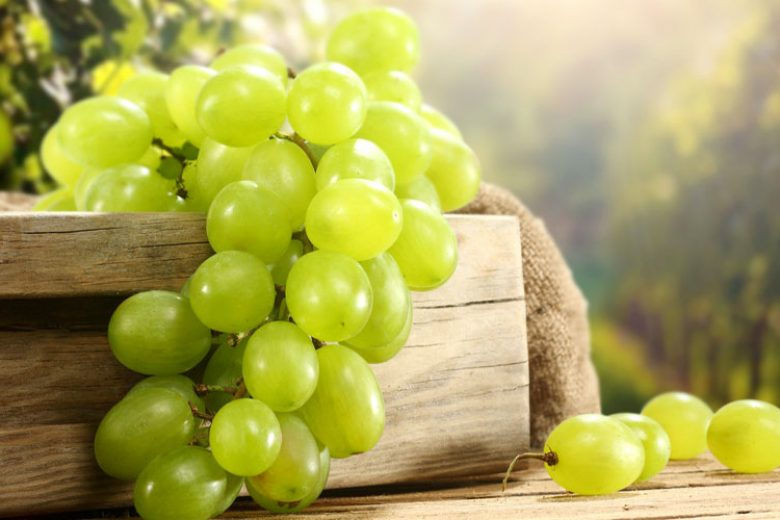 Ini Manfaat Tersembunyi Anggur