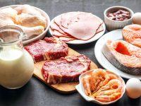 Manfaat Konsumsi Protein Hewani