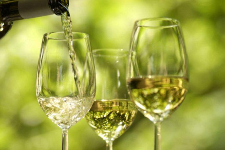 Negara Penghasil Anggur yang Sedang Populer
