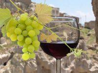 Mengenal Kawasan Klasik Penghasil Anggur