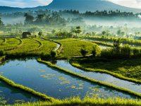 Indonesia Termasuk Tujuan Wisata 2019
