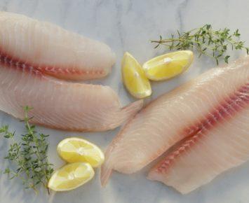 Enam Fillet Ikan Terfavorit