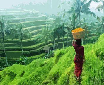Ubud Bali Siap Jadi Destinasi Gastronomi Dunia