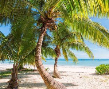 Iklim Tropis Jadi Tantangan Pertumbuhan Data Center